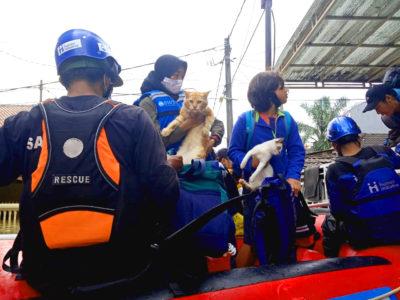 Banjir yang melanda Bekasi dan sekitarnya (20/2) tak hanya berdampak pada manusia, melainkan juga hewan-hewan.