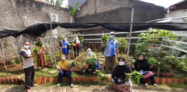 Kelompok Tani Pengadegan Panen Sayur Hidroponik
