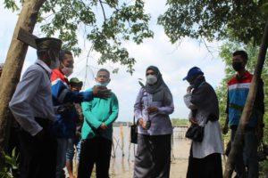 Penanaman Mangrove Pulau Semut